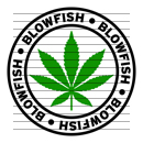 Round Blowfish Marijuana Strain Clipart