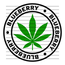 Round Blueberry Marijuana Strain Clipart