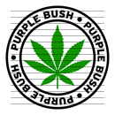 Round Purple Bush Marijuana Strain Clipart