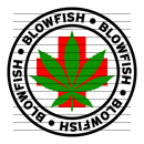 Round Blowfish Medical Marijuana Strain Clipart
