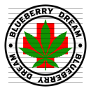 Round Blueberry Dream Medical Marijuana Strain Clipart